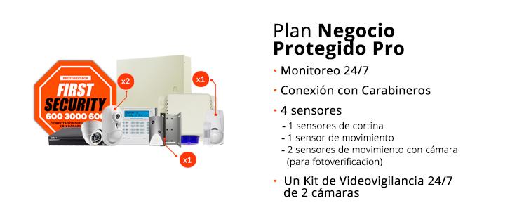 Plan-Negocio-Protegido-Pro (1)